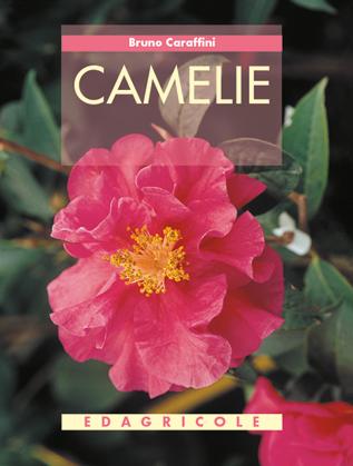 Tecniche Nuove - Camelie