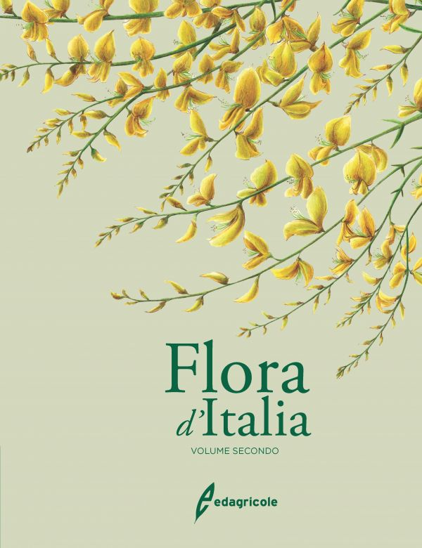 Tecniche Nuove - FLORA D'ITALIA - VOLUME 2